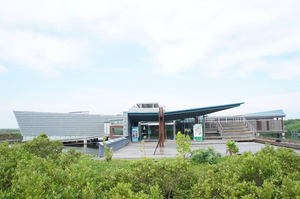 臺南市黑面琵鷺生態展示館常設展