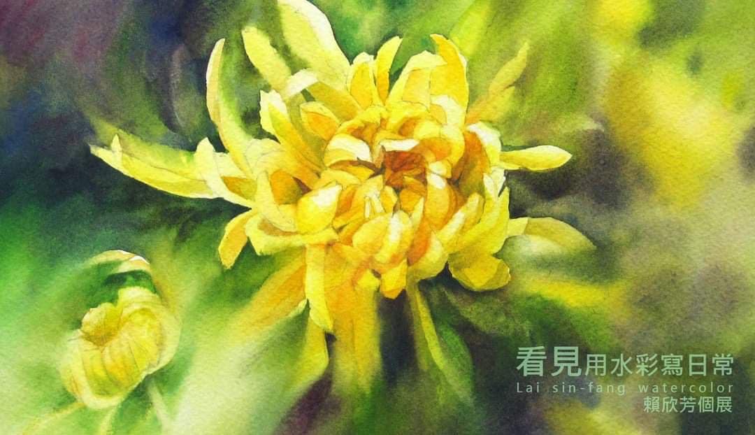 看見-用水彩寫日常-賴欣芳個展-咖啡鳥咖啡館4-5月活動訊息