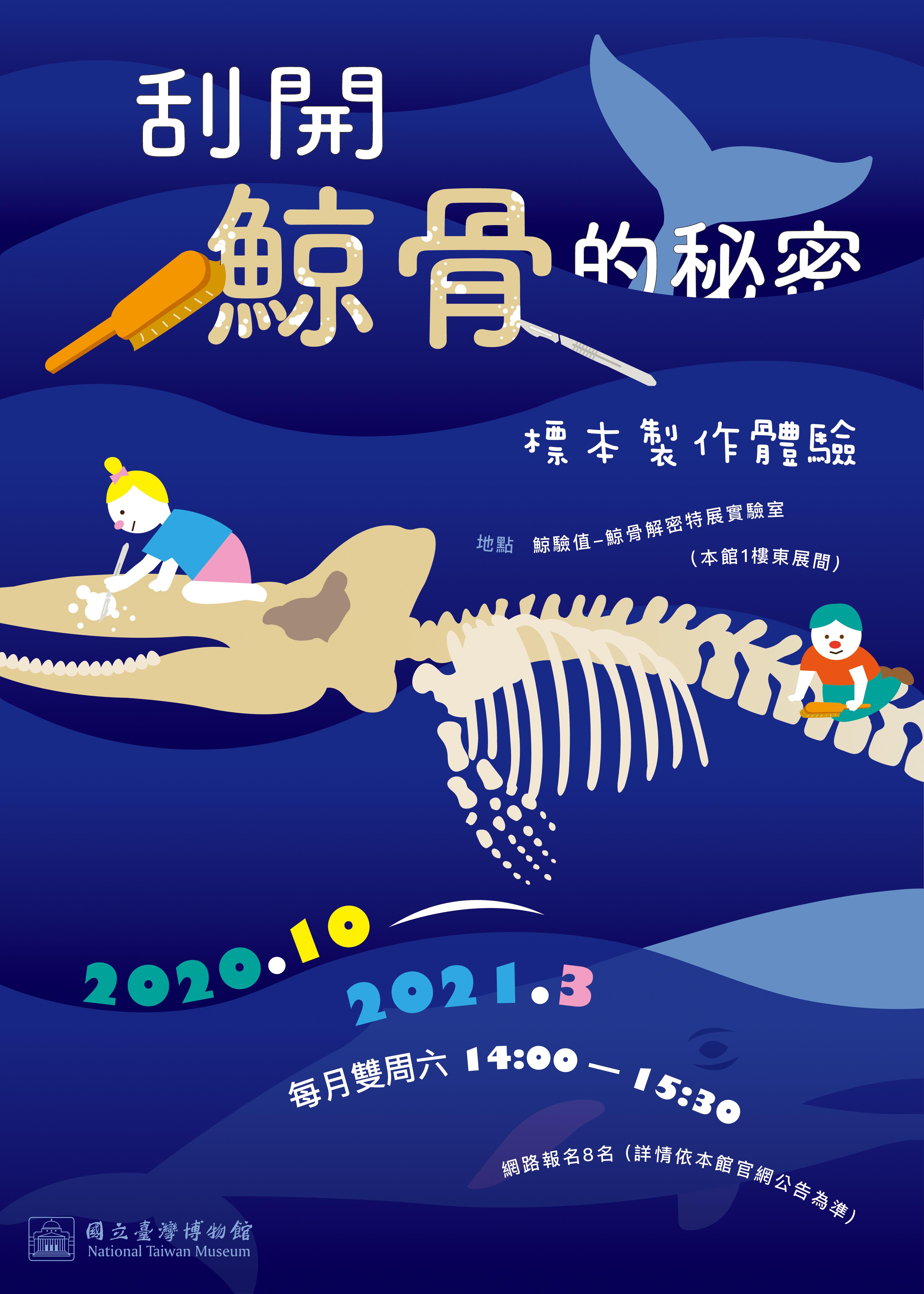 【鯨驗值-鯨骨解密特展活動】刮開鯨骨的秘密:標本製作體驗