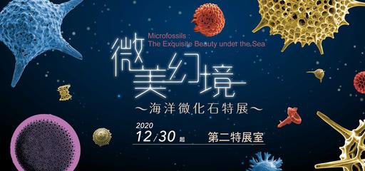 《微美幻境》特展帶你進入微美內太空